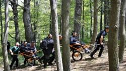 Ambiente, escursionismo sociale al Castagno dei Cento Cavalli-2
